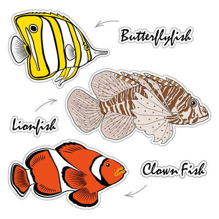 Set of Saltwater Aquarium Fish - Lionfish, butterflyfish, clown fish Illustration