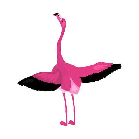 Cute pink flamingo isolated on white background