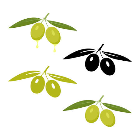 Olive icon collection silhouette vector illustration Çizim