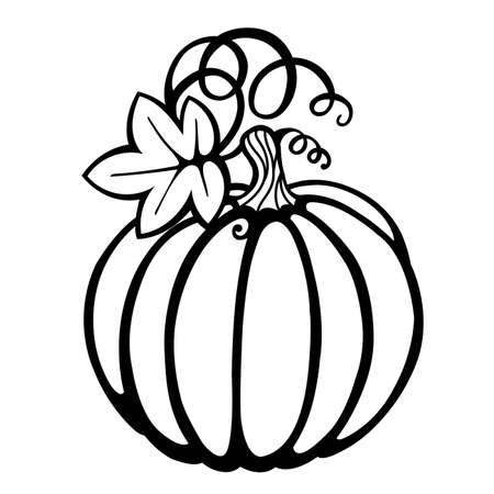 Black pumpkin silhouette vector illustration. Thanksgiving card. Pumpkin silhouette isolated on white background.