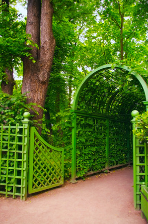 garden of eden: entrance arch from the leaves