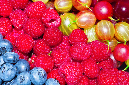 appetizing: fresh and appetizing berries