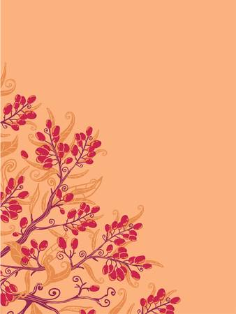 Fall buckthorn berries corner background Stock Vector - 16820382