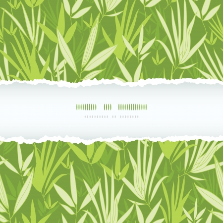 bamboo leaf: Bamboo branches torn frame seamless pattern background