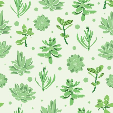 succulent: Vector succulent garden seamless pattern background graphic design