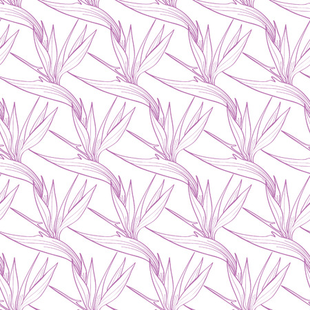 birds of paradise: Vector Birds of Paradise Flowers Seamless Pattern graphic design