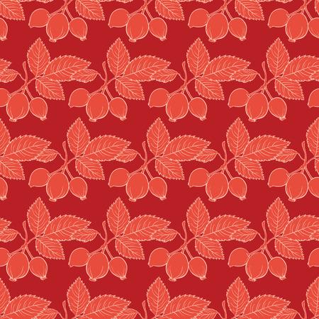 Modelo rojo Rosa Mosqueta Dibujo rayas sin fisuras diseño gráfico Foto de archivo - 42848912