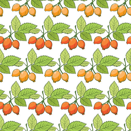 Rosehip Sosa Berries Stripes Seamless Pattern graphic design