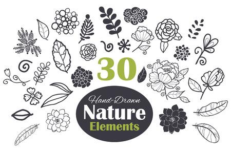Peony, flower, leaf, tulip, succulent, Echeveria, Graptopetalum. Black White Natural Elements 30 Set Seamless Pattern graphic design