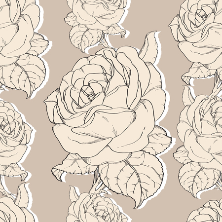 rosaceae: Seamless Pattern Hand Drawn In Botanical Style. Illustration