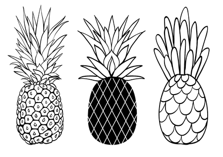 Vector set of three pineapple fruit styles summer tropical object collection. Great for travel, party invitation or packaging.