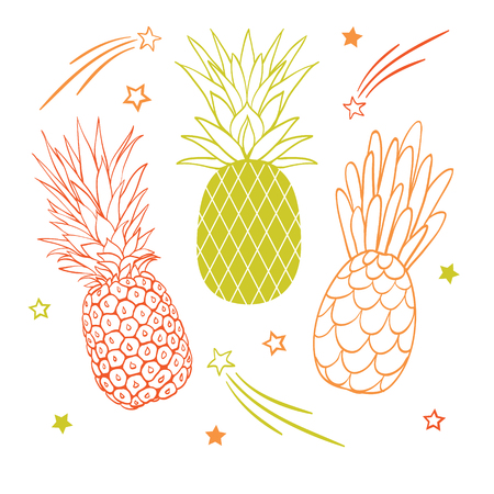 Vector set of three pastel pineapple fruit styles summer tropical object collection. Great for travel, party invitation or packaging. Illustration