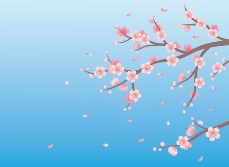 Spring background with branch of cherry blossom. Vector