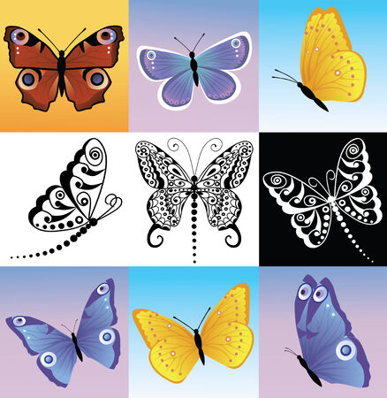 feeler: Different kinds of butterflies. Illustration