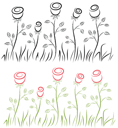 Outline of roses. Vector