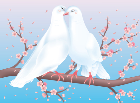 Two white pigeons sitting on the Cherry blossom and kissing. Vector