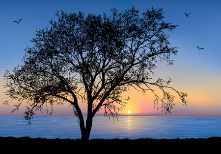 Sunset at the seaside with a Tree silhouette. Vector