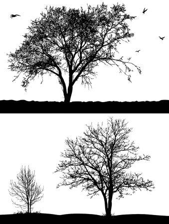 grande e piccolo: Silhouette di alberi e uccelli sullo sfondo bianco.