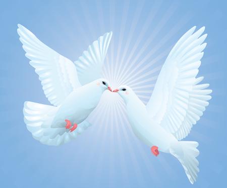 palomas volando: Dos palomas volando en el cielo.