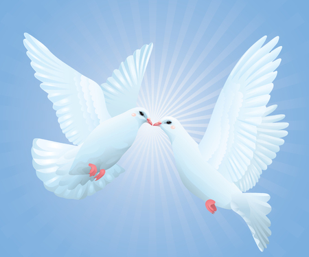 Two pigeons flying in the sky. Stock Vector - 6287096