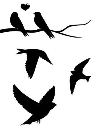 zwerm vogels: Zwaluwen.