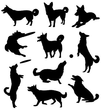 sentarse: Conjunto de siluetas de un perro.  Vectores