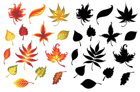 Set of leaves  Stock Vector - 21462913