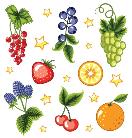 Set of summer fruits and berries  Ilustração