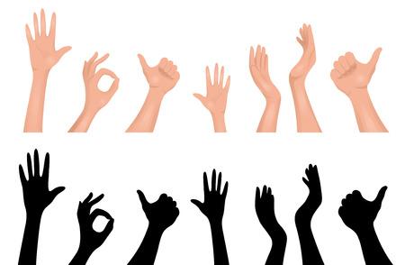 Conjunto de manos humanas. Aislado en blanco.