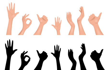 Set of human hands. Isolated on white.