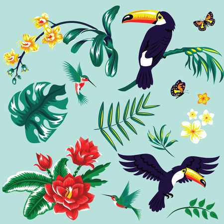 Tropical set with toucans and flowers.