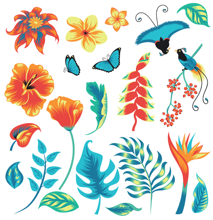 Set of tropical plants and birds. Illustration