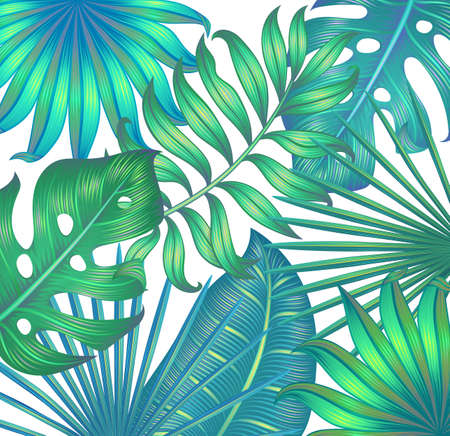 Background with tropical leaves. Tropical wallpaper. Isolated on white. Vettoriali