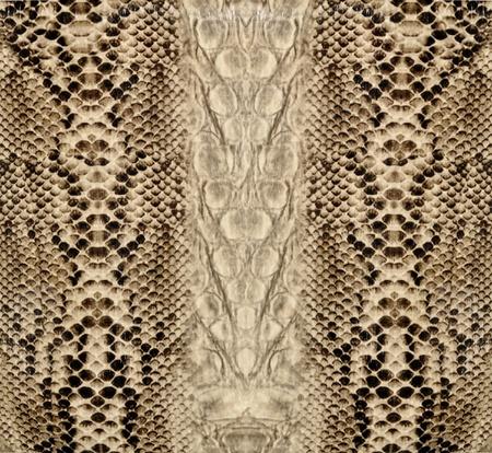 Snake huid, reptiel