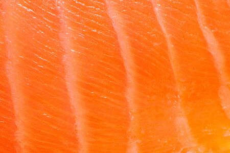 Fresh red salmon texture. Closeup photo