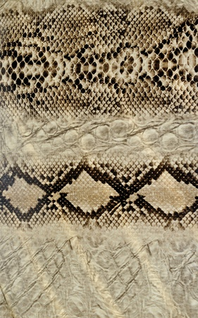 Snake skin, reptile Stock Photo