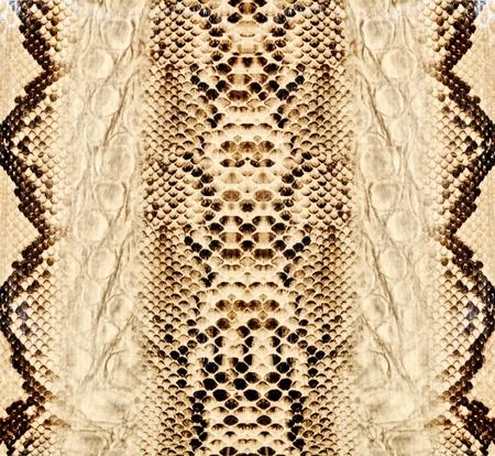 animal skin: Snake skin, reptile Stock Photo
