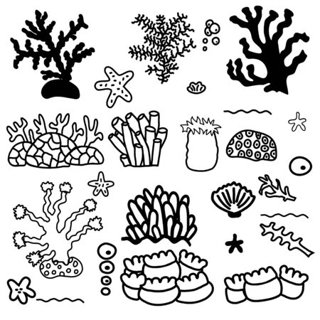Set of corals of different sizes and shapes. Isolates on a white background.