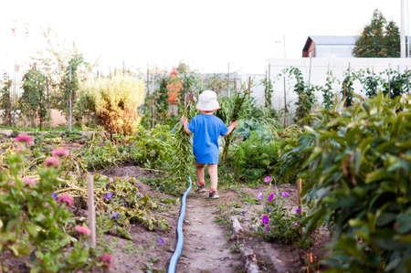 Young boy working in the garden. Stok Fotoğraf