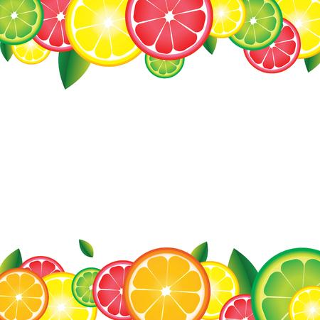 Background of citrus fruits. For bar, cocktails, cafe, restaurant, label, advertising template