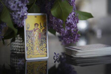 Tarot cards on the table, Nine of Coins Pentacles. Lilac bouquet. Standard-Bild