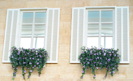 Two windows with white shutters and purple flowers under