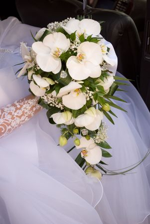 Blide hold the bouquet from orchids photo
