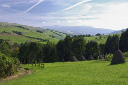 Beautiful blue sky and green grass with road and fence in Carpathian mountains