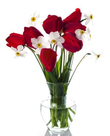 Red tulips and white narcissuses in vase isolated. photo