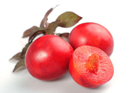 alycha: Fruit of red plum isolated on white. Prunus cerasifera var. pissardii