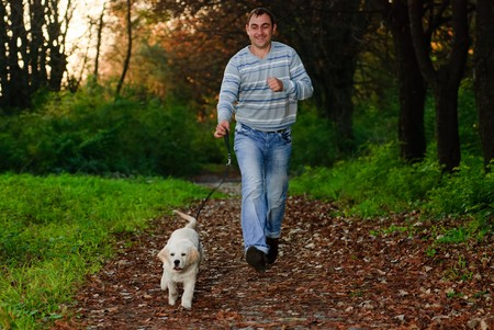 Golden retriever and man are playing in park photo