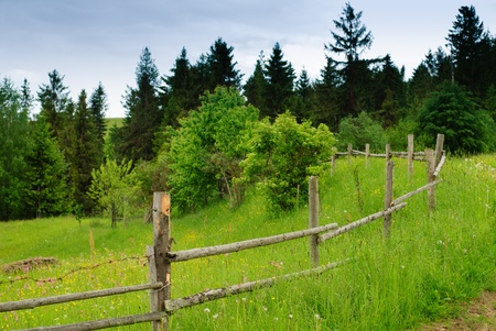 Beautiful blue sky and green grass with road and fence in Carpathian mountains photo