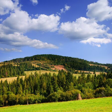 Beautiful blue sky and green grass and forest in Carpathian mountains photo