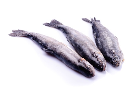 white salmon river: Dead trout isolated on white, prepared for cooking Stock Photo